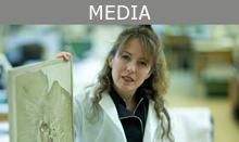 Kate Bellingham Media